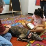 Children Discover a Love of Reading with the Help of Franklin Bark Readers